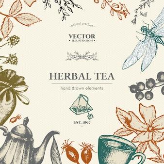 Herbata ziołowa wektor wzór karty wyciągnąć rękę ilustracji wektorowych