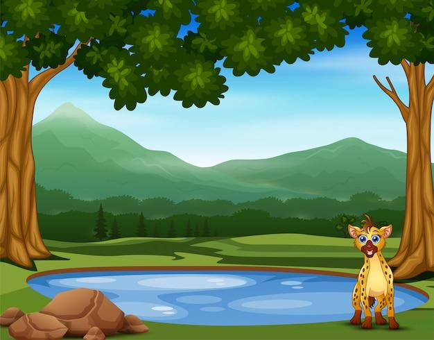 Hiena kreskówka na skraju małego basenu