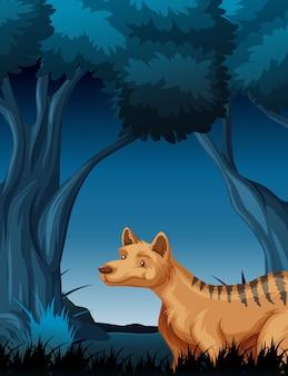 Hiena w tle tropikalnego lasu deszczowego