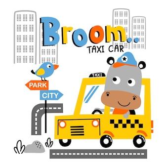 Hipopotam jest kierowcą samochodu taksówki zabawna kreskówka zwierzęca