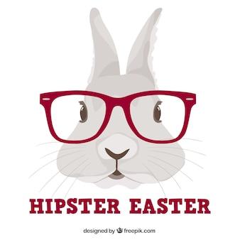 Hipster króliczek