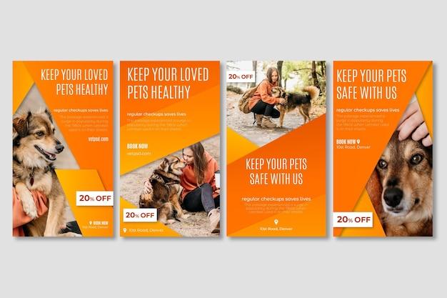 Historie na instagramie dotyczące zdrowych zwierząt domowych kliniki weterynaryjnej