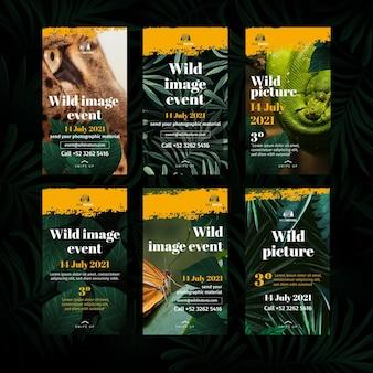 Historie z instagrama dzikiej przyrody