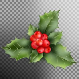Holly berry pozostawia świąteczne dekoracje.