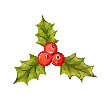 Holly oddział handdrawn akwarela wektor ilustracja boże narodzenie holly jagody