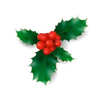 Holly oddział z czerwonymi jagodami symbol bożego narodzenia święto tradycji