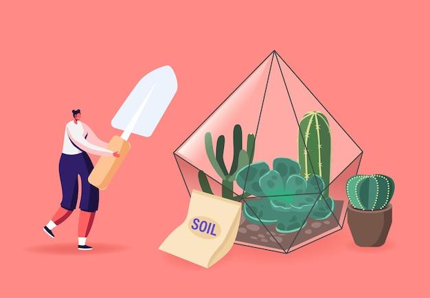 Home gardening, growing plants in terrarium illustration