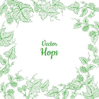 Hop roślina gałąź szkic projekt szablonu karty ramki