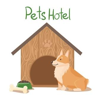 Hotel dla zwierząt. słodkie corgi obok domu i jedzenia
