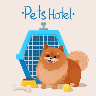 Hotel dla zwierząt. szczęśliwy pomeranian obok ilustracji przewoźnika