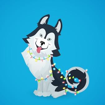 Husky pies siedzi na niebieskim tle z girlandą lampek choinkowych.