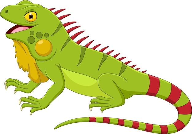 Iguana kreskówka na białym tle