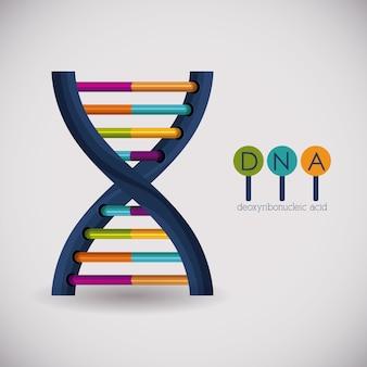 Ikona chromosomu struktury dna