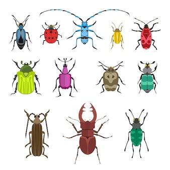 Ikona ilustracja owadów.