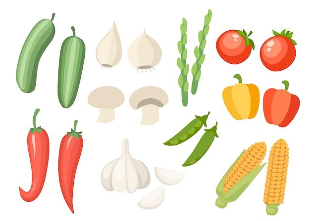 Ikona ilustracja zbiór warzyw