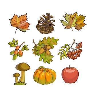 Ikona jesień lub jesień i obiekty ustawione do projektowania.