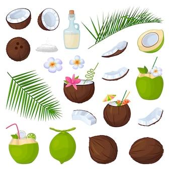 Ikona kokos na białym tle kreskówka zestaw ikon.