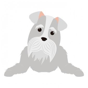 Ikona kreskówka pies ładny