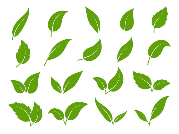 Ikona liścia. zielone liście drzew i roślin, różne kształty. eko wegańskie kiełki lub zestaw izolowanych elementów liści bio