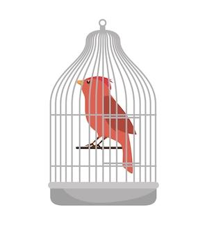 Ikona sklepu zoologicznego ptaków