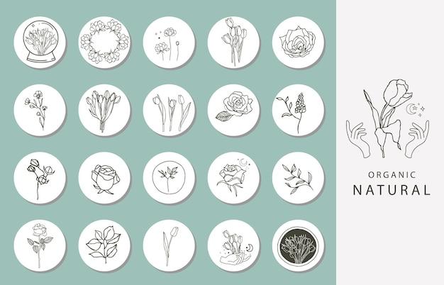 Ikona wyróżniającej okładki instagramu z kwiatem, magnolią, tulipanem do mediów społecznościowych
