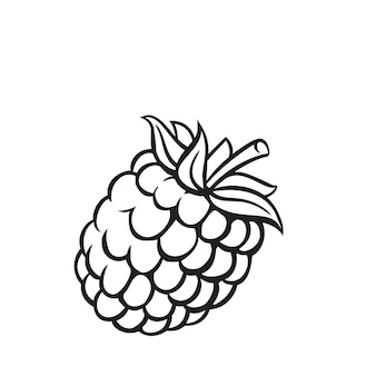 Ikonę konturu owoców malinowych, rysunek monochromatyczne zdrowe odżywianie, żywność ekologiczna, produkt wegetariański.