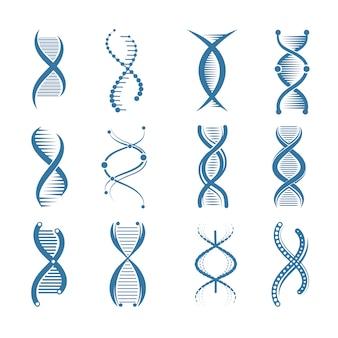 Ikony dna. biologii genetycznej ludzkiej struktury medycznych przedstawicieli naukowych symboli symbole na białym tle