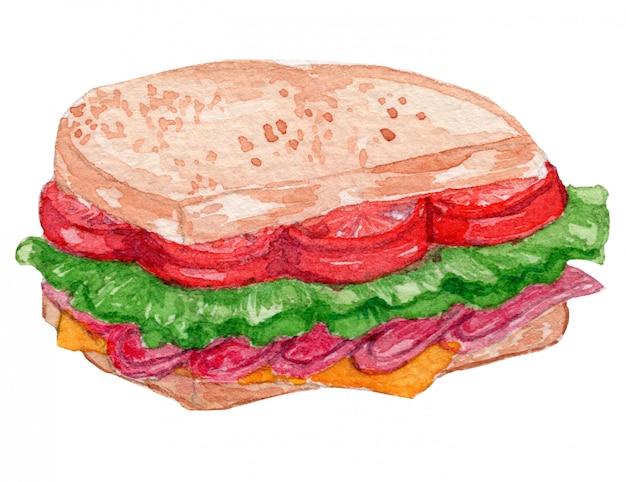Ilustracja akwarela kanapkę blt