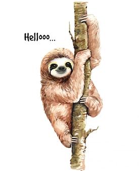 Ilustracja akwarela lenistwo. tropikalne zwierzę.