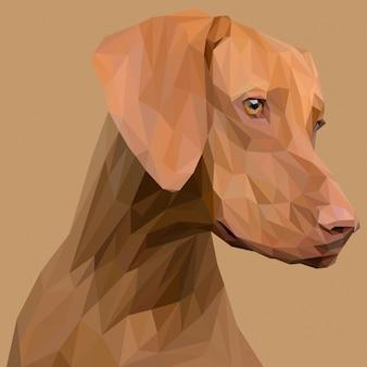 Ilustracja brązowy pies głowa lowpoly