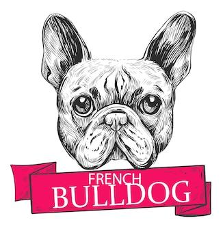 Ilustracja Buldoga Francuskiego. Ręcznie Rysowane Ilustracja Na Białym Tle Premium Wektorów