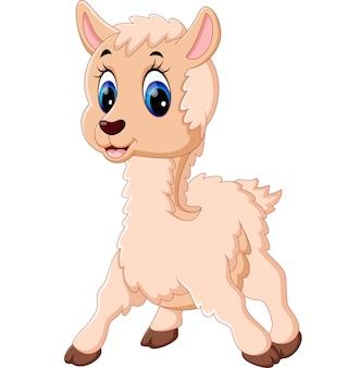 Ilustracja cute baby owiec kreskówek