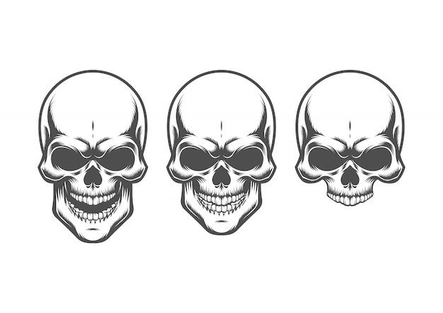 Ilustracja czaszki. pojedynczo na białym tle.