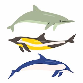 Ilustracja delfinów. białe tło.