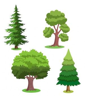 Ilustracja drzew