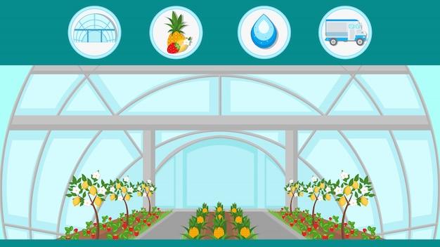 Ilustracja egzotycznych drzew owocowych kryty uprawy