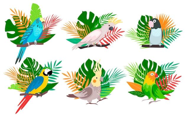 Ilustracja egzotycznych ptaków tropikalnych