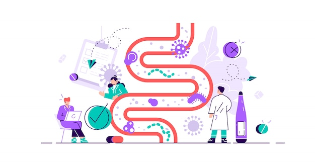 Ilustracja flory jelit. płaskie małe pojęcie osoby mikroba żołądkowo-jelitowego. abstrakcyjne organizmy żywe żołądka dla zdrowego życia. lactobacilli, coli i środowisko układu jelitowego.