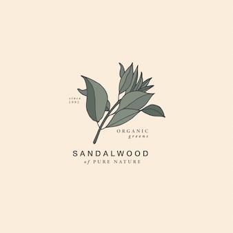 Ilustracja gałąź drzewa sandałowego - styl vintage grawerowane. skład logo w retro stylu botanicznym.