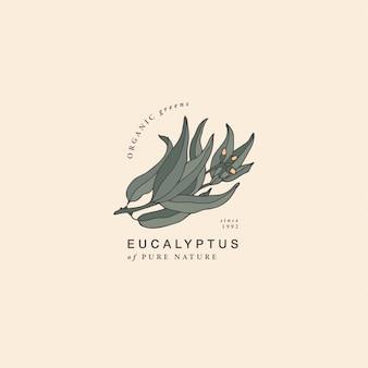 Ilustracja gałąź gumy eukaliptusowej niebieski - styl vintage grawerowane. skład logo w retro stylu botanicznym.