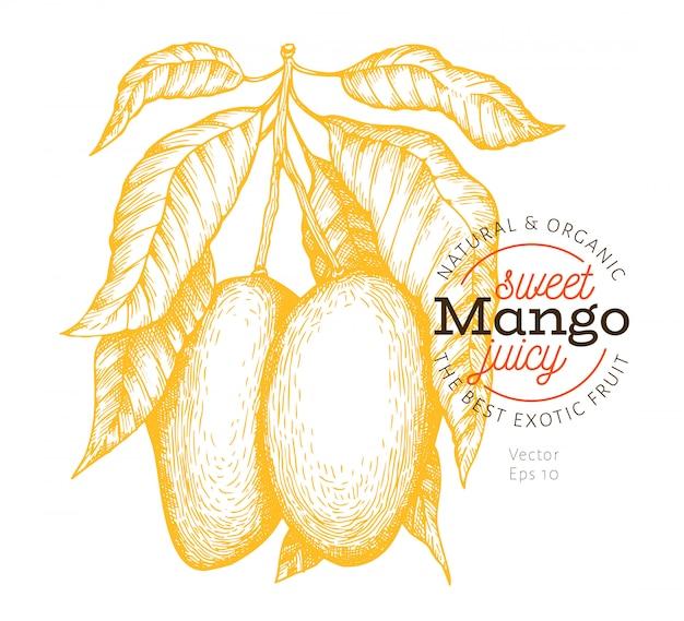 Ilustracja gałąź mango.