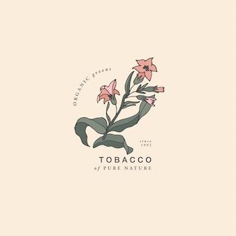Ilustracja gałąź tytoniu - styl vintage grawerowane. skład logo w retro stylu botanicznym.
