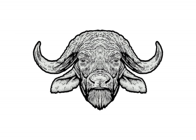 Ilustracja głowa bawołu