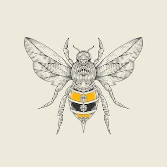 Ilustracja grawerowanie pszczoła