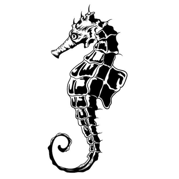 Ilustracja handrawing konika morskiego