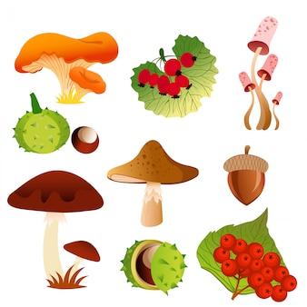 Ilustracja ikony natura jesień opadania liści drzewa i sezonowe grzyby, jagody i orzechy dębowe żołędzie w jasnych kolorach i płaskiej konstrukcji.