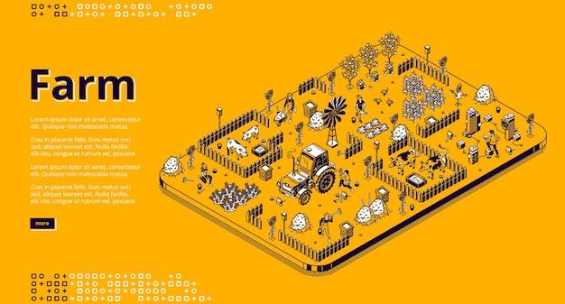 Ilustracja izometryczna farmy rolnicy pracujący w ogrodzie lub na polu, ludzie używają maszyn traktorowych, karmią świnie lub krowy, zbierają plony.