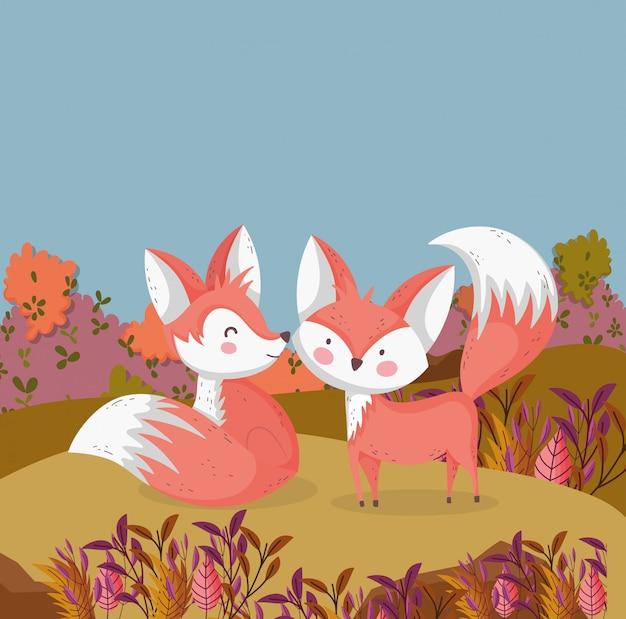 Ilustracja jesień ślicznych lisów w polu