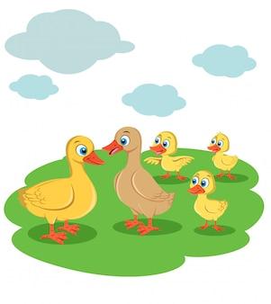 Ilustracja kaczki