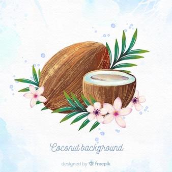 Ilustracja kokosowy akwarela